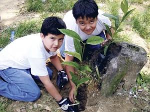 Habitantes le apuestan a la ecología