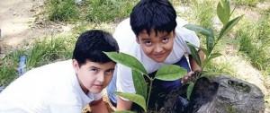 Una jornada ecológica se realizó en Semana Santa para sembrar árboles en la zona.