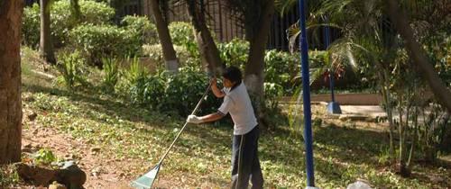 Jóvenes son ejemplo de cuidado de los parques