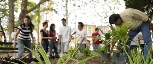 Vecinos recuperan zonas verdes