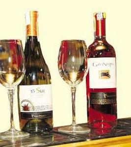 Vinos y vinos