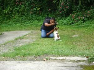 Un perro se convierte en una gran compañia.