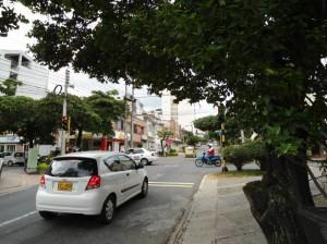 En otra parte de la ciudad sucede lo mismo con las ramas de los árboles. Se trata del semáforo de la carrera 36 con calle 41.