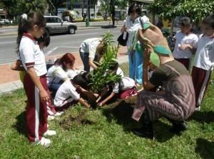 80 niños de primaria de instituciones públicas, sembraron àrboles.