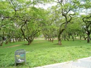 Esta foto del parque San Pío fue tomada el Viernes Santo, hacia el mediodía.