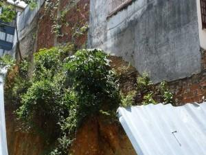 La humedad del lote poco a poco se toma las edificaciones aledañas