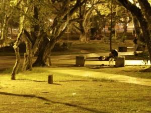 Parques están bien dotados de luz.