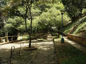 Por el parque de Leones.