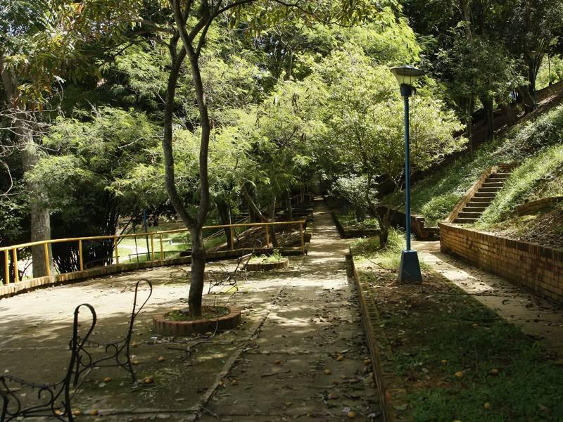 Lillya por el parque - 3 1