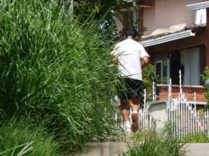 Los caminantes de esta zona son los más afectados por los drogadictos.