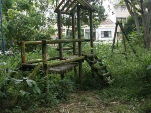 Los zancudos se han multiplicado en los alrededores del parque de La Floresta.