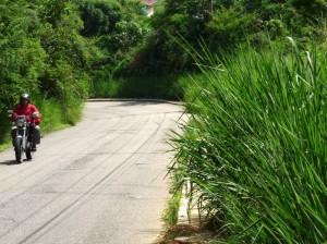 La maleza sigue siendo propicia para los incendios en la vía entre Pan de Azúcar y Terrazas.