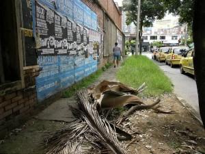Lleno de maleza y basuras permanece desde hace tiempos el andén de la calle 51 entre 32 y 33.