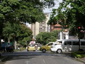 Las ramas de los árboles no permiten ver el semáforo de la calle 41 con 35.