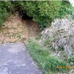 En esta entrada al sendero fue podado el bambú que bloqueaba la iluminación a las escaleras.