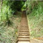 AHORA estas escaleras están más despejadas