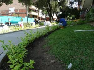 El jardín de la Acción Católica fue limpiado esta semana.