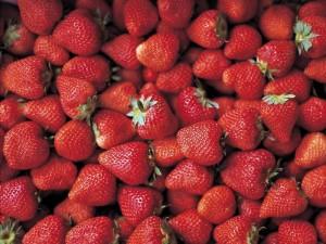 El exceso de grasas, harinas y azúcares conllevan a que el organismo pierda la capacidad de metabolizar y por tanto las arterias puedan presentar obstrucciones.