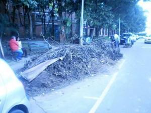Las basuras y los escombros a un costado del parque Conucos están allí hace más de una semana.
