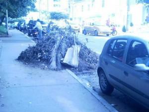 Los residentes de Conucos esperan que las empresas encargadas del barrido y recolección de escombros se apropien del caso.