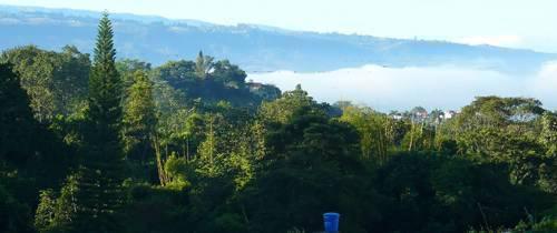¿Cree que Luis Francisco Bohórquez sí 'se dará la pela' por los cerros orientales de Bucaramanga?