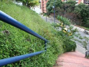 Así 'desluce' por estos días el parque La Loma.