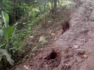 El desplome amenaza no solo a viviendas de La Floresta, sino con el taponamiento de la quebrada y algunas redes del acueducto que pasan por la zona.