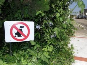 Aunque en el sector se han hecho campañas para educar a los dueños de mascotas, estas no han sido suficientes para erradicar el problema.