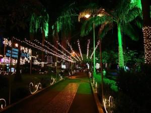 Así se iluminó para Navidad el parque Las Palmas en el año 2008.