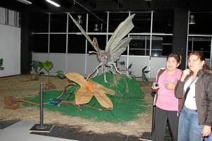 La exposición 'Fantasía de Mariposas' también está allí.