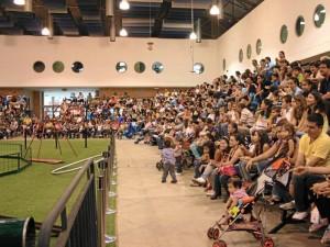 La jornada fue liderada por el Centro de Ferias, Exposiciones y Convenciones de Bucaramanga, Cenfer.