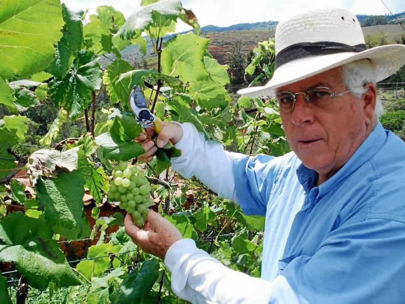 Sergio Rangel Consuegra, fundador del viñedo Sierra Morena, donde se produce Vino Tinto Perú de la Croix.