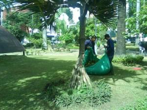 Esta semana la Sociedad de Mejoras Pública, mediante convenio con la Alcaldía de Bucaramanga, podó el césped del parque.