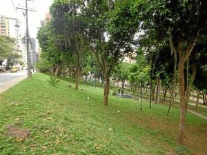 Parque Los Sarrapios, más conocido como 'Puyana'.