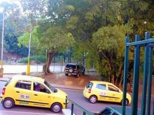 Esta camioneta, según el lector que nos envió la foto, es estacionada con frecuencia en la zona verde adjunta al parque de Los Leones.