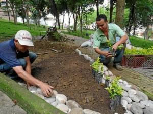 Esta semana se empezó a remover la tierra para sembrar las 300 plantas. La comunidad se ha unido y han pagado a una persona para que haga la poda.
