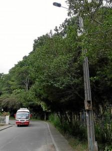 Sigue siendo un problema para los residentes de Pan de Azúcar el servicio público de transporte.