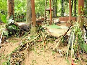 Los daños ecológicos en el parque fueron graves.Los daños ecológicos en el parque fueron graves.