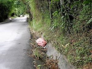 La limpieza de las cunetas en la vía hacia Toscana, es otra petición del sector.