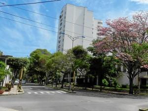 Avenida González Valencia de día.
