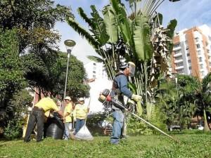 La poda de árboles se hizo en todo el parque.   ( Fotos Javier Gutiérrez )