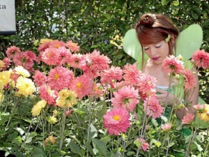 La variedad de flores en-galana al parque Mejoras Públicas.