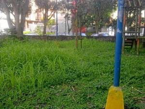 La maleza también hace parte de la cara negativa del parque. Foto 45