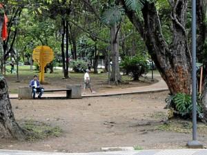 Desde varios puntos del parque se observa el deterioro del prado