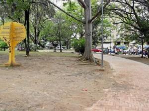 Además del estado de las zonas verdes, la Periodista del Barrio denuncia el aumento de ventas ambulantes.