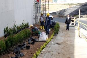 Los jardines empiezan a tomar color en los corredores peatonales del intercambiador.