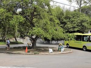 La ruta AQ4 de Metrolínea parte de Pan de Azúcar bajos, pasa a Altos de Pan de Azúcar, baja a la glorieta de nuevo y parte hacia El Jardín.