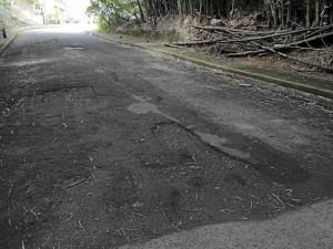 Calle 50 carrera 54, vía entre Pan de Azúcar bajos y Los Cedros