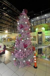 Un árbol lila da otro ambiente al cuarto piso de La Quinta.