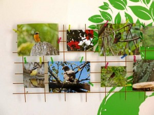 La muestra fotográfica de la Fundación Za Sua se volverá a abrir en enero de 2013.